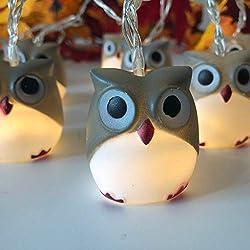 Writtian 10 LEDs 1.65M LED Lichterkette Halloween Kugeln Eule Warmweiß, Außerlichterkette Deko für Garten Bäume Terrasse Weihnachten Hochzeiten Partys Innen und außen