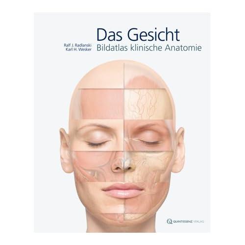 PDF] Das Gesicht: Bildatlas klinische Anatomie KOSTENLOS DOWNLOAD ...