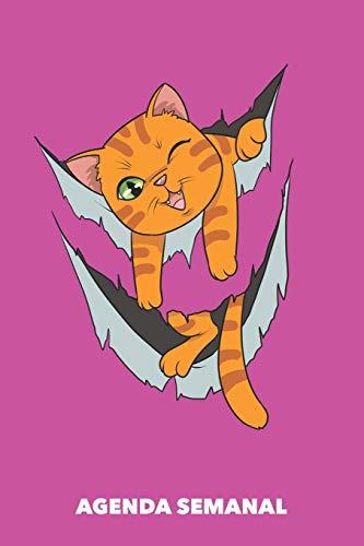 Agenda Semanal: Miau dentro A5 manuscrito floral - Cuaderno con Planificador Semanal 52 Semanas para dueños de gatos (rosa)
