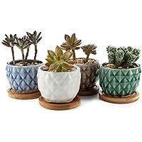 MuciHom 8.3CM Piña Maceta de cerámica vidriada Cactus suculento con bandejas de bambú Lote de 4, decoración de casa y Oficina, Regalo de Boda, cumpleaños, Navidad