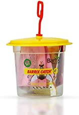 Barrix Catch Fruit Fly Trap+Lure (Set of 3 Nos)