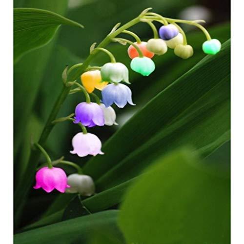 Swiftt 100Pcs Maiglöckchen Blumenzwiebeln Samen Bunter Blumensamen mehrfabrig Zierblumen Bonsai winterhart mehrjährig Glockenblume für Barkon, Garten