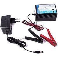 ProPlus mantenimento carica batterie batteria Trainer 12Volt
