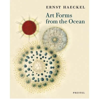 Art Forms from the Ocean: The Radiolarian Prints of Ernst Haeckel (Paperback) - Common