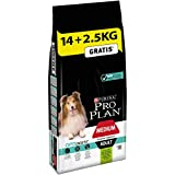 Pro Plan Dog Medium Adult, Sensitive Digestion, Reich an Lamm, Trockenfutter Beutel, 1er Pack (1 x 16,5 kg)