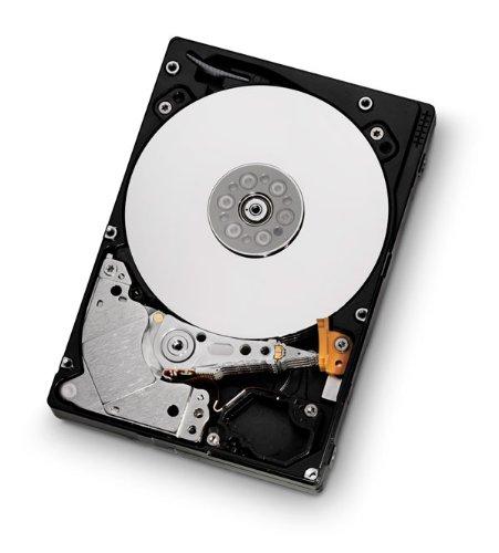 hgst-travelstar-c10k900-600gb-600gb-sas-internal-hard-drive-internal-hard-drives-600-gb-sas-10000-rp