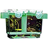 Hobby 61360 Nido II, Ablaichbehälter, 21 x 16 x 14 cm