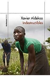 Descargar gratis Indestructibles en .epub, .pdf o .mobi