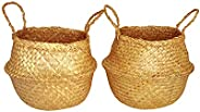 Natural Seagrass belly basket 2 pcs Medium with free gift card for potted plants handwoven home storage organi