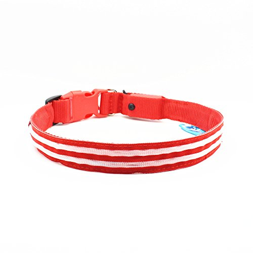 LED-Dog-Collar-USB-Rechargeable-Available-in-6-Colors-Makes-Your-Dog-Visibility-Safety-Medium1575-196940-50cm-Red