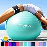 arteesol Gymnastikball 45cm / 55cm / 65cm / 75 cm inkl. Pumpe Anti-Burst Sitzball für Yoga Pilates Fitness Physiotherapie (5 Farben) (Türkis, 65cm)