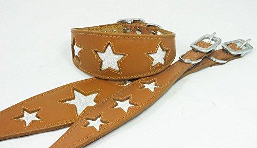 30,5-35,6cm Leder Whippet Halsband Tan mit glitzerndem Sternenmotiv -