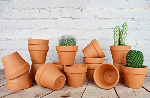 My Urban Crafts Terra Cotta Töpfe, klein, Terrakotta, Blumentöpfe mit Abflusslöchern, Ton, Blumentöpfe, klein, Keramik, für Kakteen Sukkulenten Hochzeiten, 16 Stück