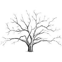 Lienzo de árbol para huellas dactilares y firmas, decoración para banquete de boda, ...