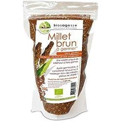 Semillas de mijo orgánico marrón salvaje - mijo para germinar | 250g | Ecoidées