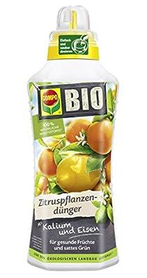 Compo Bio Zitruspflanzendünger für Alle Zitruspflanzen-Arten, Natürlicher Spezial-Flüssigdünger von Compo auf Du und dein Garten