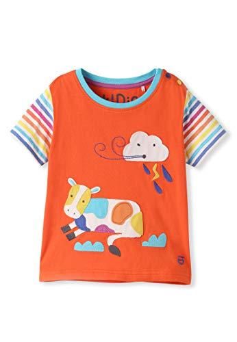 Bio-Baumwolle T-Shirt mit Applikation - Baby Kleinkind Mädchen Junge (0-4 Jahre) (24M (18-24 Monate), Orange) -