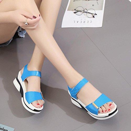 Transer® Damen Keilabsatz Flach Sandalen Schwarz Blau Weiß Mid-heeled Klettverschluss PU-Leder+Polyurethan Outdoor Sandalen Blau