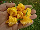 Fash Lady 30 Stücke Gelb Trinidad Skorpion Samen Pornografische Paprika Chili Samen Hause Graden Bonsai Samen Freies Verschiffen