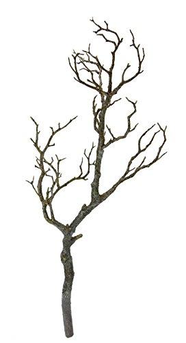 7 Äste Korkenzieherhasel Zweige Basteln Dekoration 2 Lassen Sie Unsere Waren In Die Welt Gehen Bastel- & Künstlerbedarf