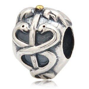 e85b569d4 everbling silver bead. Caduc e Everbling Life Saver argent Sterling 925  authentique compatible avec les Bracelets Pandora Biagi