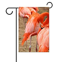 THEHO pexels-photo-1264210 Personalized Ultra Cotton Garden Flag 31X46cm; 12x18 inch.