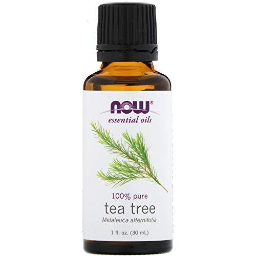 Das Reine Ätherische Öl Now Foods (Now Foods | ätherisches Teebaumöl bio | 30 ml | Melaleuca Alternifolia)