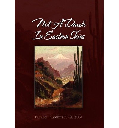 not-a-dawn-in-eastern-skies-by-author-patrick-cantwell-guinan-published-on-january-2011