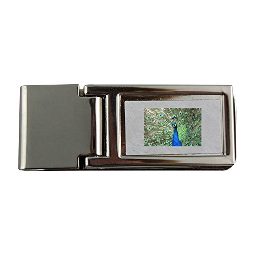 Metal money clip with beautiful male peacock with its colorful tail feathers (Peacock Tail Feather)