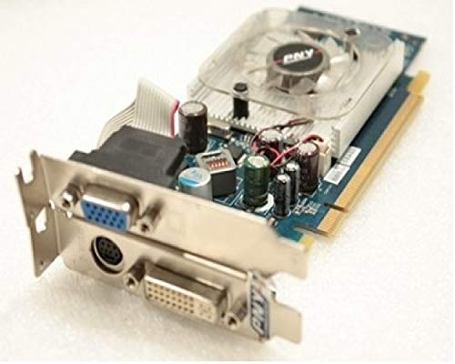 First4GraphicCards PNY nVidia GeForce 8400 GS Low Profile PCI Express x16 Dual Display Scheda Grafica Video + Staffa LP VGA