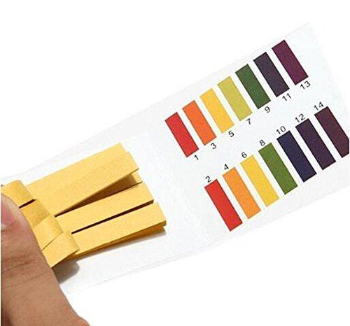 PH 1-14 Testpapier Litmus Streifen Tester Wasser Kosmetik Acid Alkaline Test Kit 480pcs Ideal zum Testen von vielen üblichen alltäglichen Substanzen, einschließlich feuchtigkeitsspendende Seife...