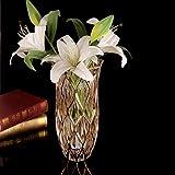 C&S Gold Edge Europäischen Kristall Vase Glas Ornamente Wohnzimmer Dekorationen Hydroponischen Pflanzgefäße