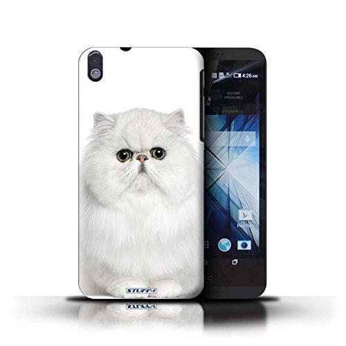 Kobalt® Imprimé Etui / Coque pour HTC Desire 816 / Scottish Fold conception / Série Espèces de chats Persan Blanc