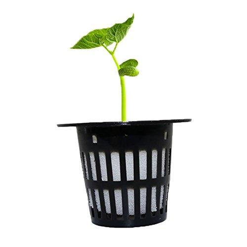 adhere to Fly Lot de 30 pots de cire végétale fin Plante Germe Starter et soulever Plante Fantronix soilless Pot Nursery Pots Graines Trays noir