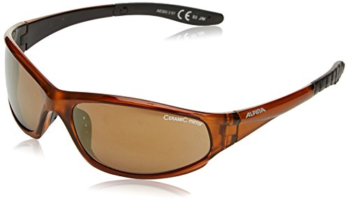 ALPINA Sonnenbrille WYLDER Outdoorsport-brille Brown Transparent One Size
