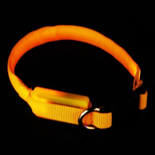 FamilyMall(TM) Hunde Katze LED Halsbänder Hundehalsband Leuchthalsband Blinklicht Leucht gelb - 3