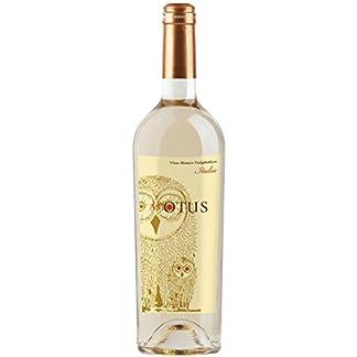 Asio-Otus-weiss-Vino-Varietale-dItalia-Mondo-del-Vino