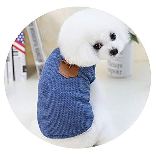 r Hunde für kleine Hunde Weste Haustier Hund Kostüm Chihuahua Sommer süße Hundekleidung Haustier Kleidung Welpen Outfit 36 A1 ()