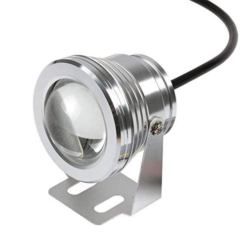 Dengofng 10W 12V RGB LED Teich Hell 900LM IP67 Wasserdicht Außen Scheinwerfer für Landschaft Aquarium Teich Schwimmbad Brunnen Garten - Warmes Weiß, Free Size