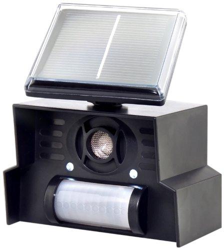 gardigo solar vogelabwehr test juli 2018 testsieger bestseller im vergleich. Black Bedroom Furniture Sets. Home Design Ideas
