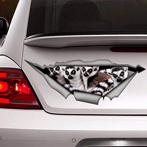 Funny Lemurs decal, car decal Vinyl Sticker for Cars, Windows, Walls, Fridge, Toilet and More – 15 Inch