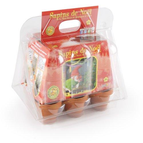 Radis et Capucine 027026 Serre de Noël Plastique 6 Pots Terre Cuite avec 6 Sachets de Graine Multicolore 5 x 5 x 5 cm