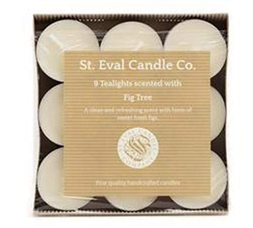 St Eval Fig Tree Tealights Tray of 9
