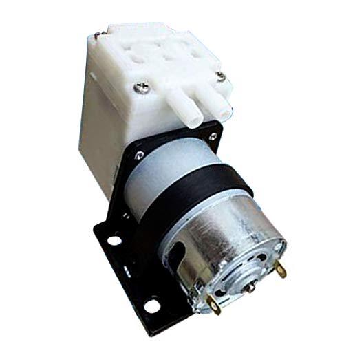 iumpumpe Zahnradpumpe Membranpumpe Pumpwerkzeug, 1.2L/min, für Brunnen Aquarium Labor, Niedrig Stromverbrauch ()