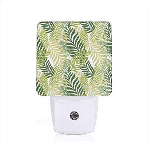 Tropical Exotic Palm Tree Leaves Natural Botanical Spring Summer Contemporary Graphic Plug-in LED Night Light Lamp with Dusk to Dawn Sensor, Night Home Decor Bed Lamp