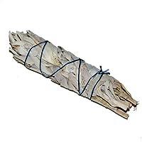 Räucherwerk: Mittlerer weißer Salbei-Stab von Native-Spirit.eu -- Smudge Stick ML, ~14cm (5-6 Inch) white sage... preisvergleich bei billige-tabletten.eu