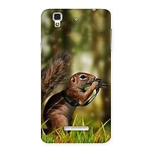 Impressive Squirrel Multicolor Back Case Cover for Yu Yureka