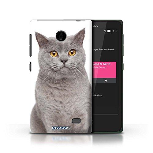 Kobalt® Imprimé Etui / Coque pour Nokia X / Abyssinien conception / Série Espèces de chats Bleu britannique