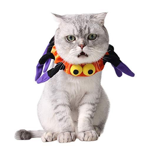 Maybesky Hund Sonnenbrillen Katze und Hund Kleidung Halloween Pet Fliege Pet Supplies Ostern Kleidung Pet Dress Up. für Hunde Augenschutz wasserdicht
