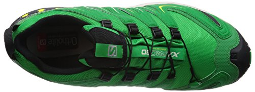 Salomon XA Pro 3D GTX fern greenlight greyblack